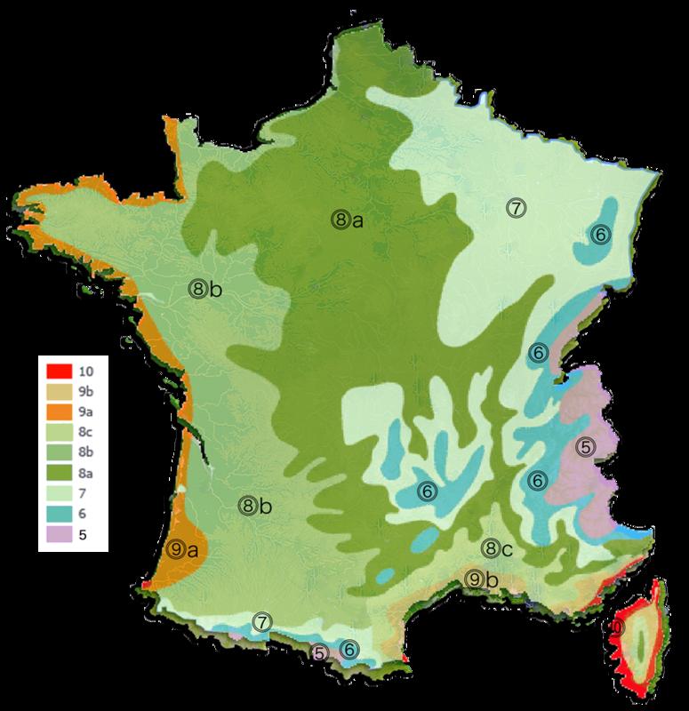 Zones de rusticité pour la culture en France