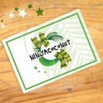 ninjacoconut-bon-cadeau-palmier